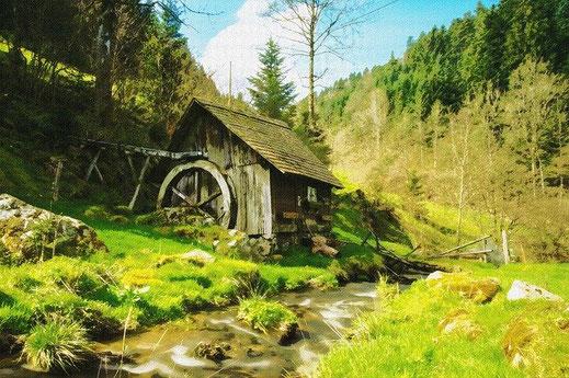 Mit dem Fahrrad durch den Schwarzwald.