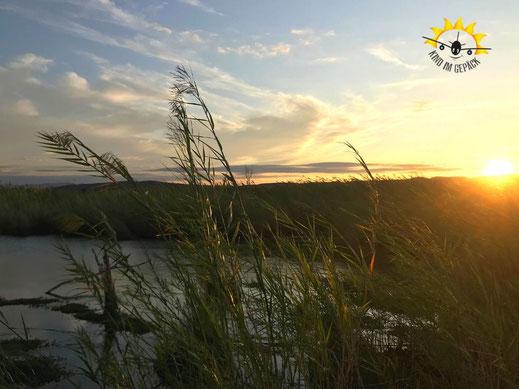 Sonnenuntergang im Big Bend NP vom Rio Grande Nature Trail.