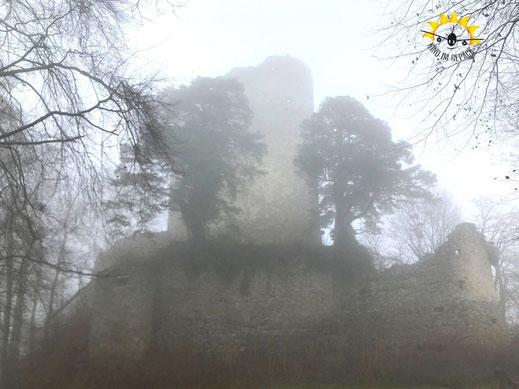 Die Überreste der Burg Altbodmann erheben sich aus dem Wald.