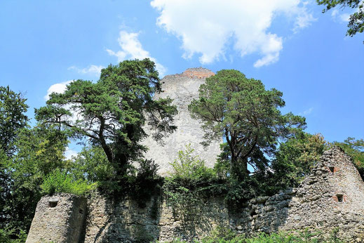 Tolles Ausflugsziel: Burgruine Bodmann auf dem Bodanrück.