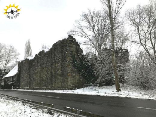 Die Ruine Schopflen direkt an der Allee auf die Reichenau.