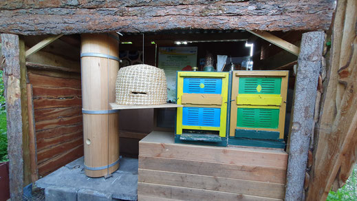 Schaustand auf dem Imkerhof mit verschiedenen Bienenbehausungen