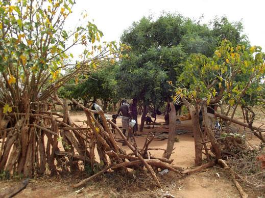Chez les Hamer à Lojura en Ethiopie. Voyage Séjour Trek Trekking Randonnée Road Trip en Ethiopie Visite de la Vallée de l'Omo en Ethiopie.