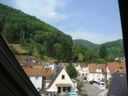 Blick aus dem Dachfenster nach Nord-Ost