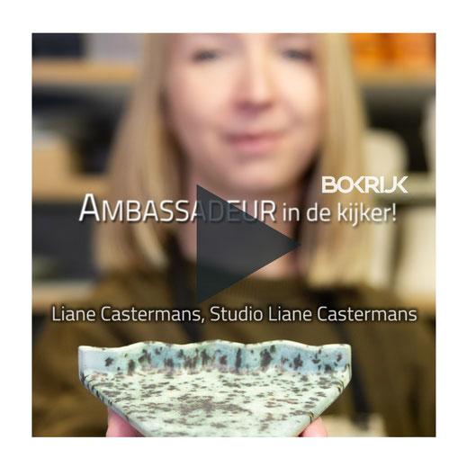 Bokrijk, Studio Liane Castermans, Bedrijfsvideo, Bedrijfsfotografie, Interview, Videointerview