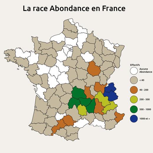 Carte de France avec la répartition de la race bovine Abondance