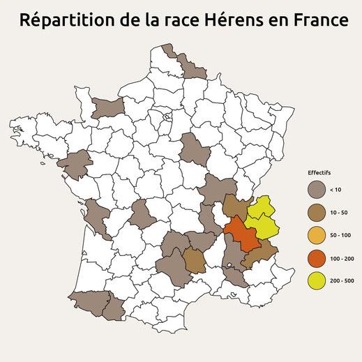 Effectif au 6 avril 2020 –  1 021 animaux détenus en France portant le code racial 82
