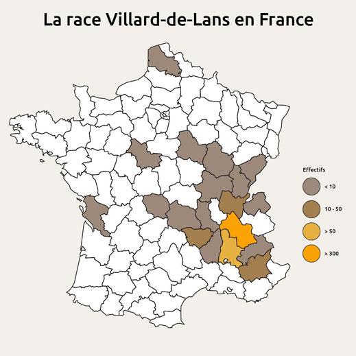 Inventaire des animaux de race Villard-de-Lans nés avant le 31 décembre 2019 et présents dans les élevages au 31 décembre 2019