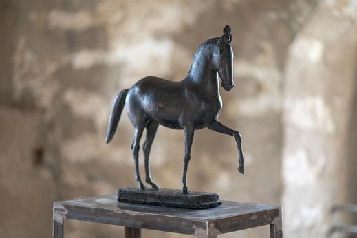 Hans Wimmer, Zirkuspferd