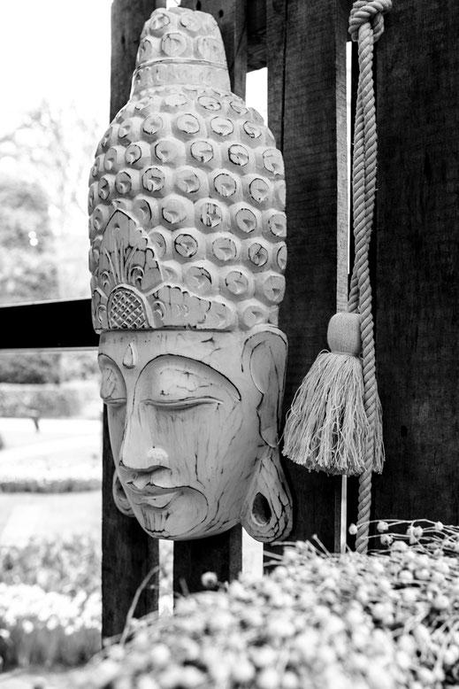 Buddha kopf keukenhof Virginie varon