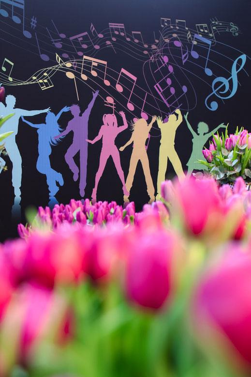 Tulpen rosa Tulip music Keukenhof Virginie Varon