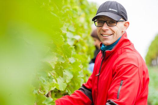 Weingut E C Hirsch Watzelsdorf Winzer im Weingarten