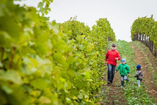 Weingut E & C Hirsch Watzelsdorf Familie im Weingarten