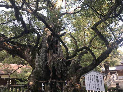 大山祇神社(大三島)の御朱印 しまなみサイクリング2018 しまなみ海道
