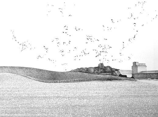 Mono 4, 2006. (Tuschstift auf Papier. 52 x 65 cm)