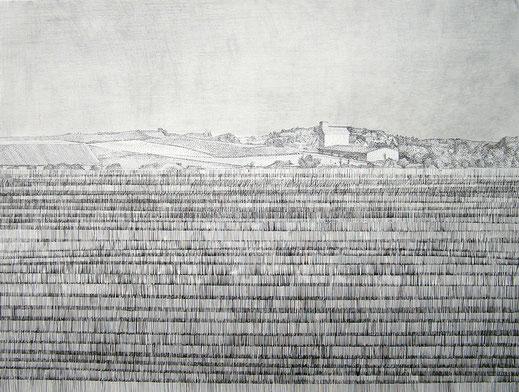 Mono 3, 2005. (Tusche, Tuschestift, Bleistift/Papier, 52 x 65 cm)