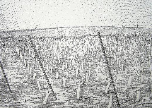 Mono 2, 2003. (Tuschestift/Papier. 21 x 29, 5 cm)