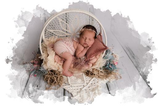 Baby Fotograf, Neugeborenen Fotografie, Oberösterreich - Salzburg Eimer Junge Löwe