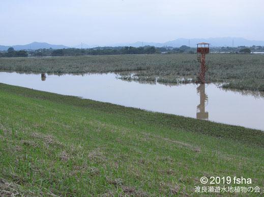 画像:2019/10/14 河川の水が越流した遊水池