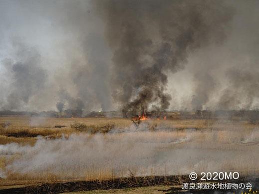 画像:2020/03/21 ヨシ焼き