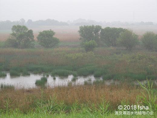 画像:2018/04/24雨に煙る第3調節池