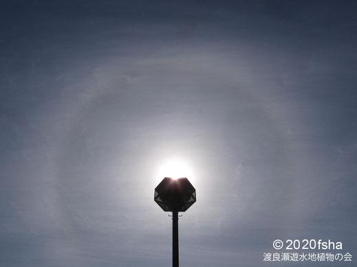 画像:2020/02/19 太陽の暈