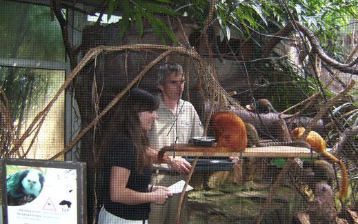 Recherche im Heidelberger Zoo für eine Hinter-den-Kulissen-Reportage