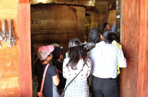 樽を見学する小学生