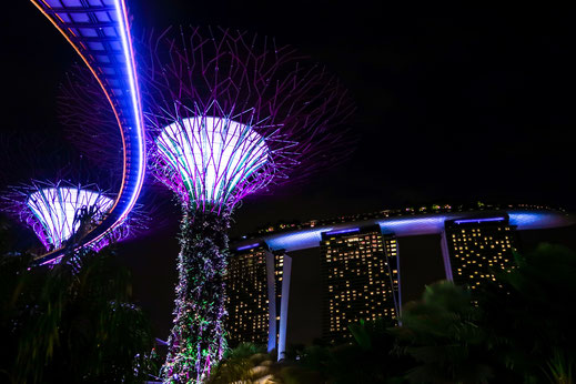 Garden by the Bay Supertrees