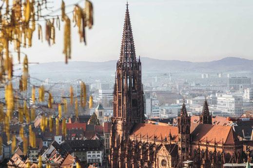 Münsterturm Freiburg