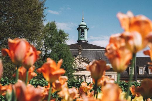 Schlossgarten und Botanische Garten Münster
