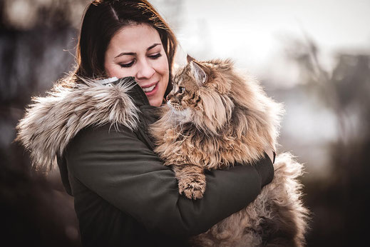 Mädchen m it Ihrer gestreiften Norwegischen Waldkatze  fotografiert von der Hundefotografin Monkeyjolie in der Ostschweiz