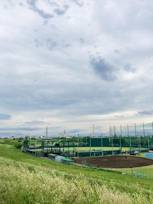 〈写真〉鈴木選手が撮影した球場