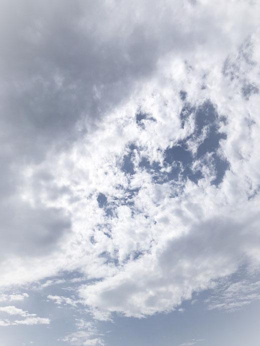 〈写真〉鈴木選手が撮影した空