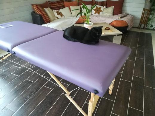 Chat noir couché sur une table de soin violette.