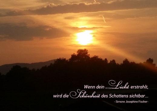 Postkarten Simone Fischer LichtGarten Licht Sonnenuntergang