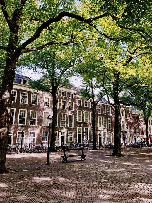 Lange Voorhout in The Hague
