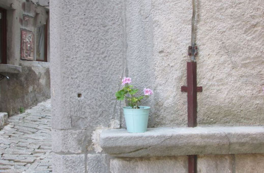 A flower pot on a ledge in a small town