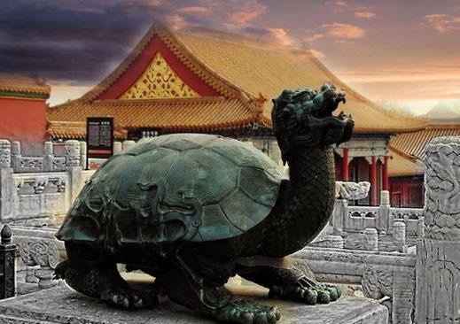 Schildkröten Geheimnisse Landwirbeltiere Namur Jan Fabre Kosmologie Vishnu Urmeer Spiragalaxie cymatics Zeitbegriff Kosmogonie