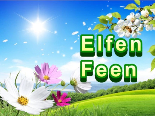 Dieses Bild zeigt eine bunte Blumenwiese. Der Text fragt: Wo wohnen die Elfen und Feen, die Naturgeister unserer Vorfahren?