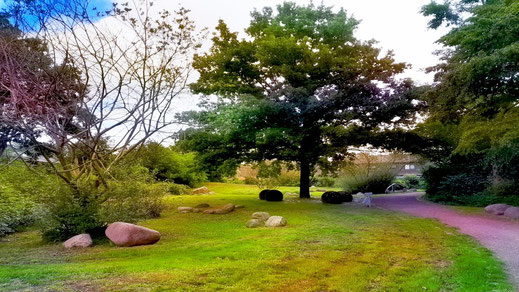 Dieses Foto zeigt einen Stadtpark mit schönen Bäumen, dekorativen Steinen und einem gewundenen Spazierweg.