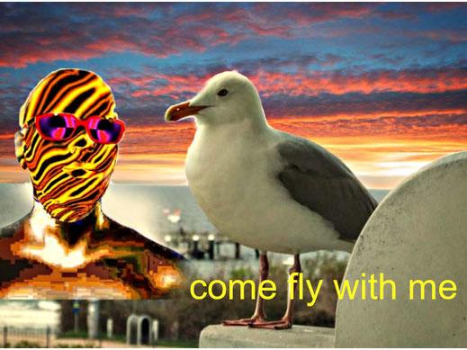 Eine Möwe sitzt auf einer Balkonbrüstung. Ein stilisierter, digitaler Feuerkopf lädt sie zu einem Rundflug ein. Der Titel dieses surrealen Bildes lautet: com fly with me.