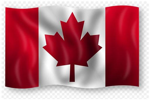 Ahorn Kanada Nationalflagge Blaubeerpfannkuchen Sirup Hexenabwehr Ahornblätter Botanik Ahorne Reisen Urlaubsland
