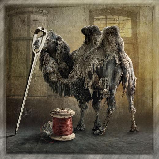 Eher geht ein Kamel durchs Nadeloehr