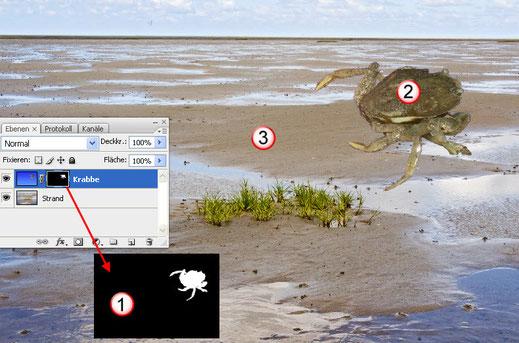 Ebenenmasken in Adobe Photoshop