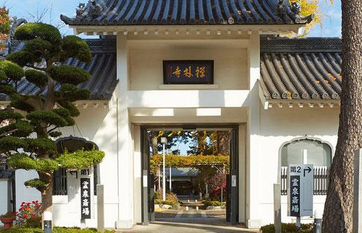 禅林寺の画像