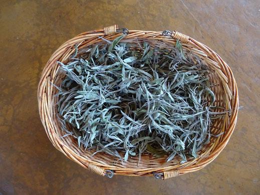 Naturellement Chouette - herbes aromatiques - Rouvenac