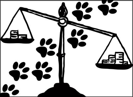 hundestrand Hundesteuer interessanter Link