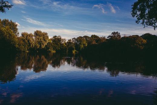 pêche de la carpe sur lac et étang privés