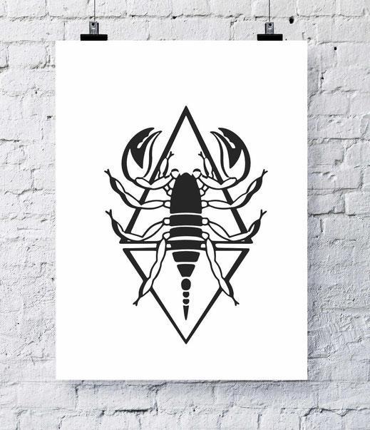 Illustration - schwarz-weiß - Skorpion